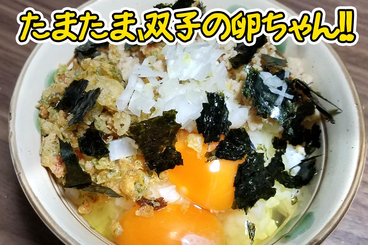 リッチな?卵かけご飯